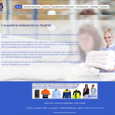 diseño pagina web para pymes ejemplo 4