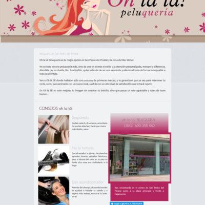diseño-pagina-web-pyme-4