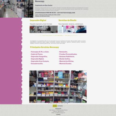 diseño pagina web para pymes ejemplo 11