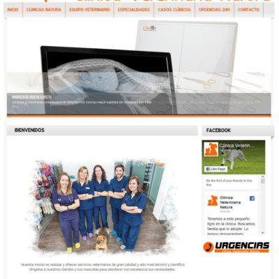 diseño pagina web empresa ejemplo 6