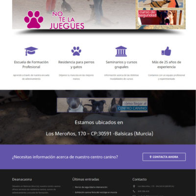 diseño pagina web empresa ejemplo 12