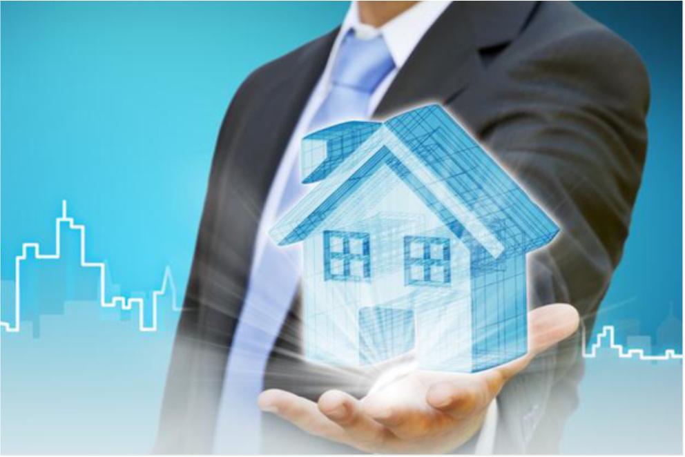 programa inmobiliaria